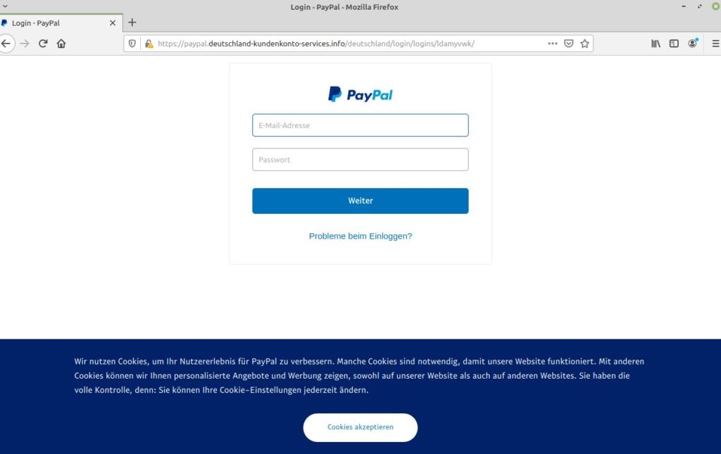 Paypal Zahlung Autorisiert